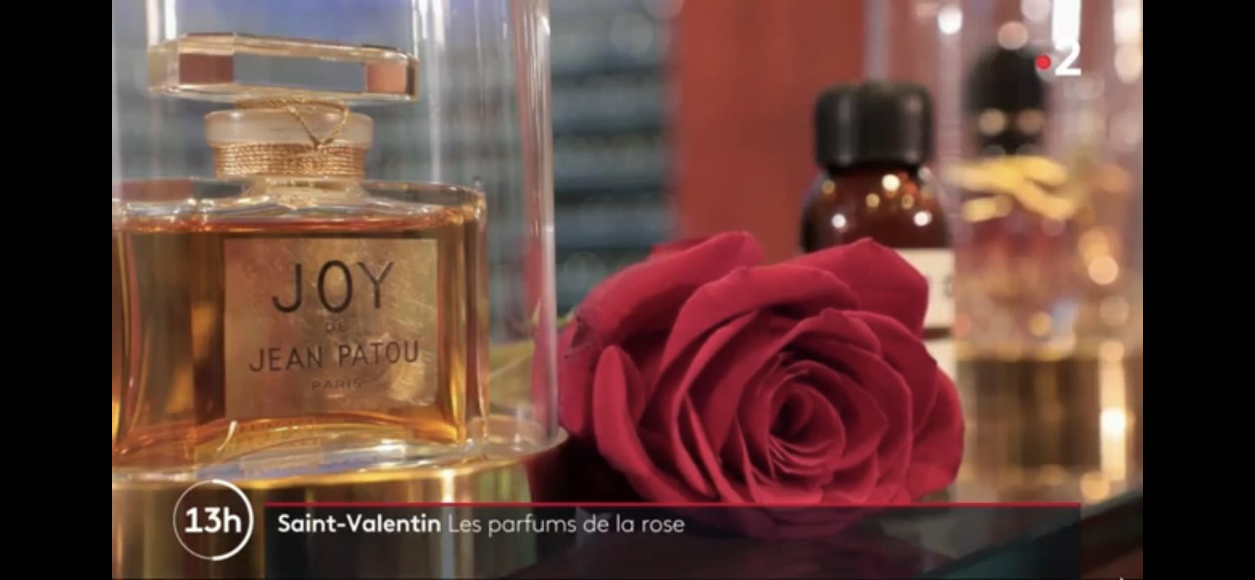 La rose dans les parfums